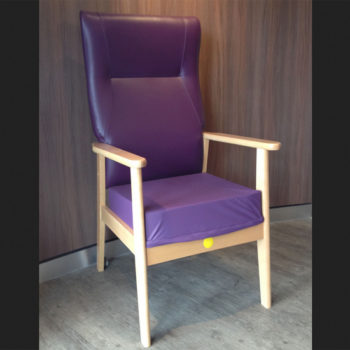 Renray chair main