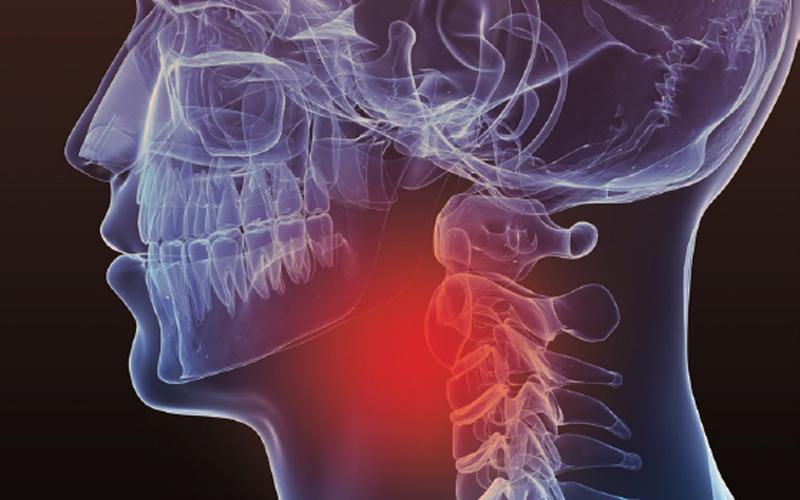 Apetito Dysphagia