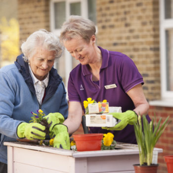 FOR DEMENTIA USE ONLY, IF YOU ARE UNSURE PLEASE CONTACT THE MARKETING TEAM