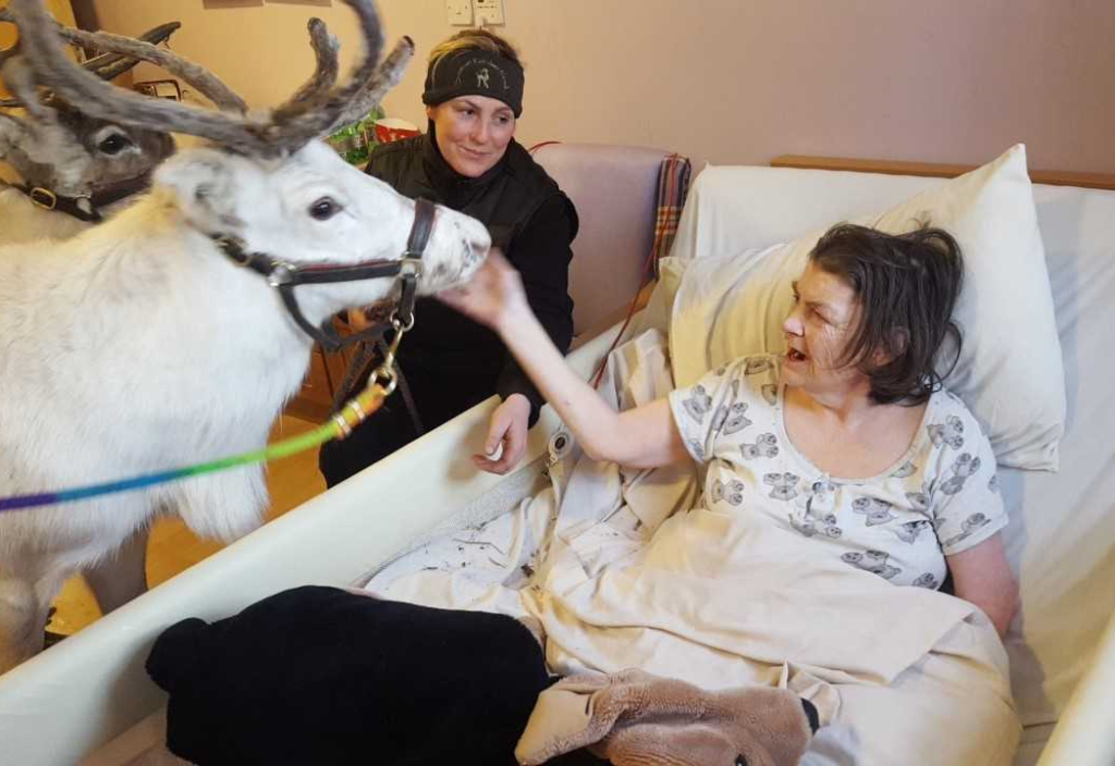 Avalon resident Sandra Humpfryes feeds Winter the reindeer